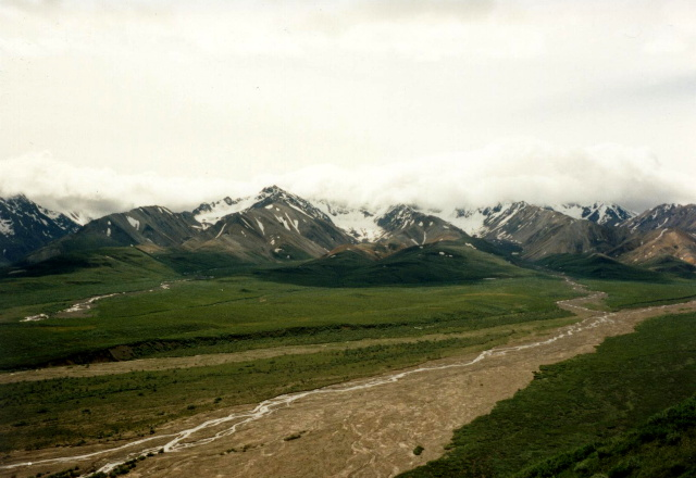 DENALI NATIONAL PARK - ZONE 31-32   n2backng.com on map of juneau, map of grayling, map of florida everglades, map of hatcher pass, map of chitina, map of alaska, map of tracy arm fjord, map of island of dominica, map of soldotna, map of the brooks range, map of akiak, map of elfin cove, map of prince william sound, map of admiralty island, map of white mountain, map of shishmaref, map of akutan, map of north pole, map of mt mckinley, map of wasilla,