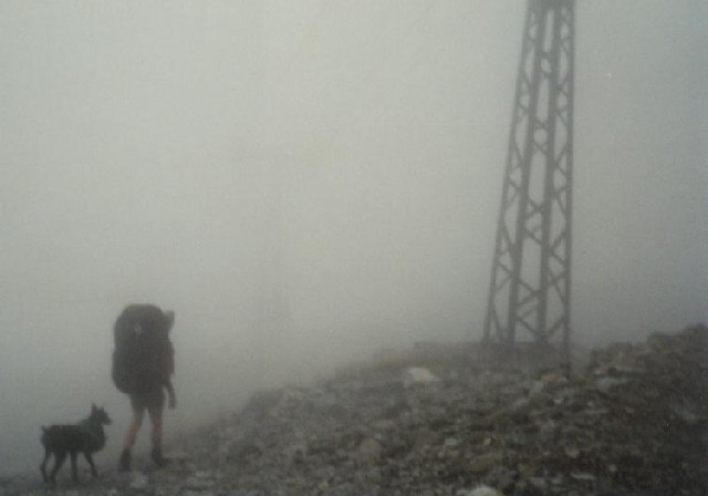 The Foggy Summit Of Stratton Mountain