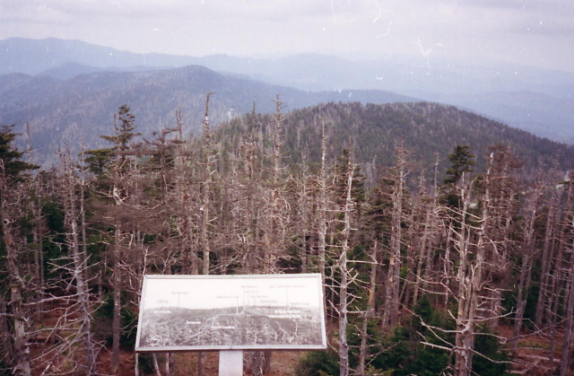 View From Clingman's Dome In the GSMNP