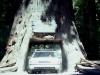 1996-road-trip-712