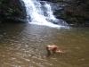 THRIFT LAKE FALLS