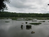 LANDSFORD CANAL