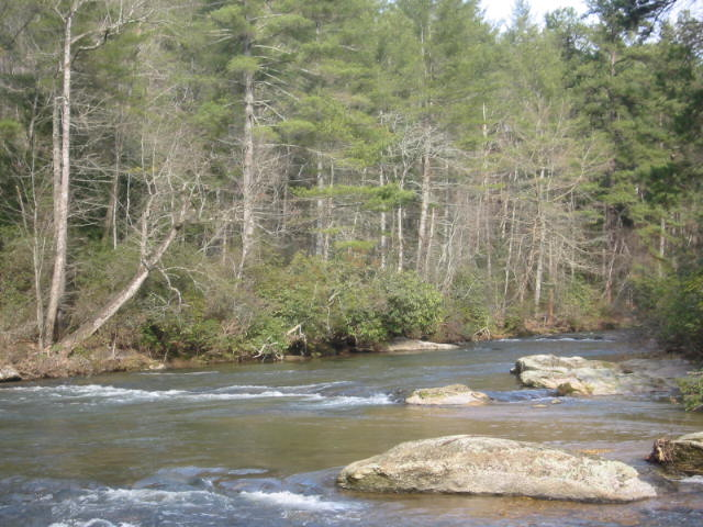 The Cartecay River - Rich Mountain Wilderness