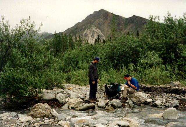 Checking The Map In Zone 31-32 Of Denali National Park