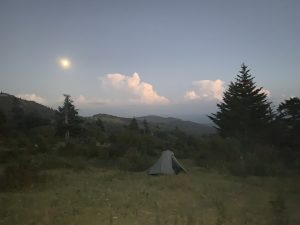 Moonlight In Jefferson National Forest